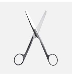Steel scissors vector image