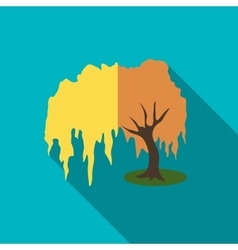Willow tree icon flat style vector image