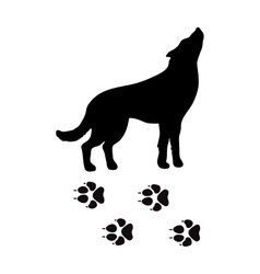 Black silhouette wolf wild animal zoo vector image