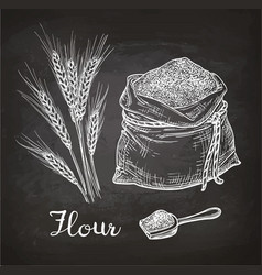 Chalk sketch of wheat and bag of flour vector