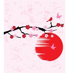 Cherry blossom birds vector