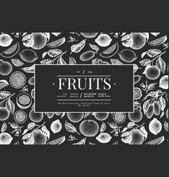 Citrus design template hand drawn fruit on chalk vector