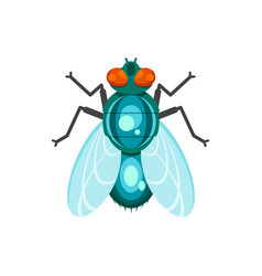 Flat style fly vector
