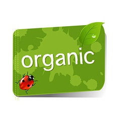 Organic Green Label vector image