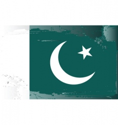 Pakistan national flag vector image