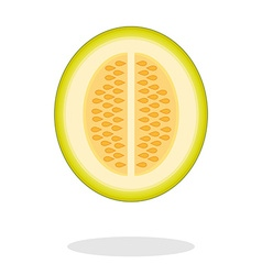a half melon with drop shadow Isolated vector image