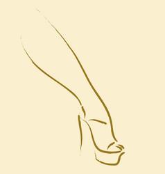 sexy leg vector image vector image