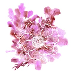 Peony flowers on a watercolor background vector image