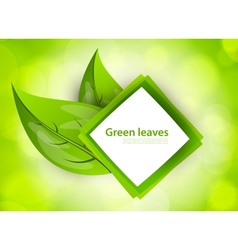 Abstract icon with leaves vector image
