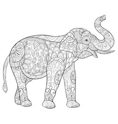 Adult coloring bookpage a cute elephant image vector