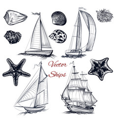 Collection of elements on theme of sea vector