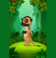 Cute meerkat cartoon in the clear and green forest vector
