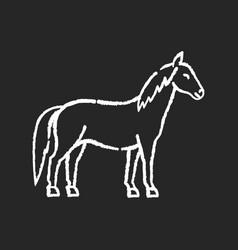 Horse chalk white icon on black background vector