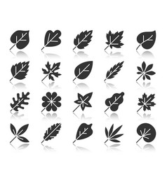 Organic leaf black silhouette icons set vector