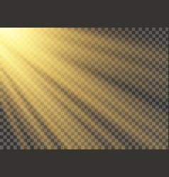 Transparent sunlight vector