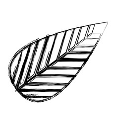 Monochrome sketch of tree leaf vector