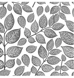 seamless pattern of birch honeysuckle grey leaves vector image vector image