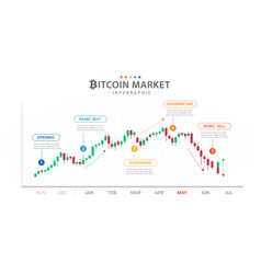 infographic bitcoin diagram with market phases vector image