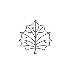 Leaf hawthorn tree for different design autumn vector