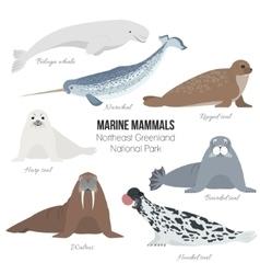 Marine mammal set Walrus narwhal harp bearded vector