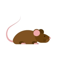 Mouse isolated vector