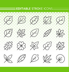 organic leaf simple black line icons set vector image