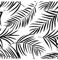 Tropical palm leaves black and white vector