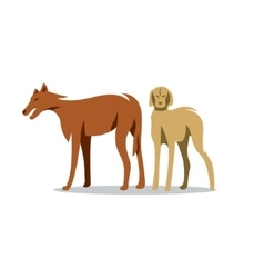 Two Dogs Cartoon vector image