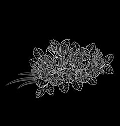 bouquet of flowers vector image vector image