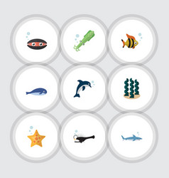 flat icon marine set of alga playful fish sea vector image
