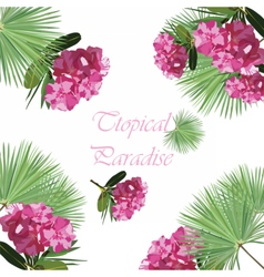 Tropic flowers card vector image vector image