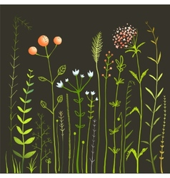 Wild Flowers and Grass Field on Black Collection vector image vector image