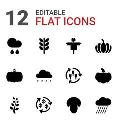 12 autumn icons vector