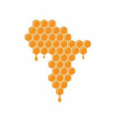 African honey design vector