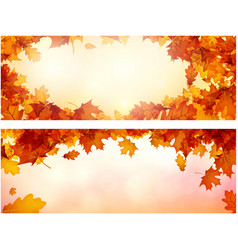 autumn banners with orange leaves set vector image