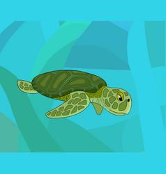 cartoon sea colorful turtle stock vector image