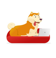 funny dog with laptop rounds its tail up vector image