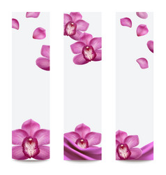 orchid purple set banners vector image