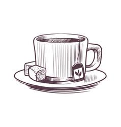sketch tea cup hand drawn mug vector image