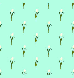 white tulips on green mint background vector image