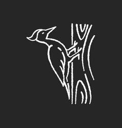 Woodpecker chalk white icon on black background vector