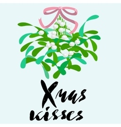 Mistletoe with pink bow and curly ribbon vector image vector image
