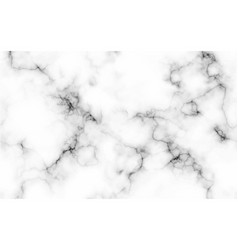 Abstract marble pattern texture black and white vector
