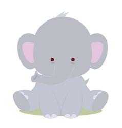 bacute elephant vector image