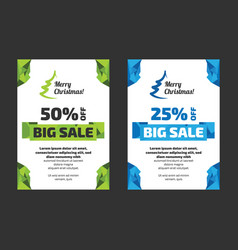 big sale flayer template vector image