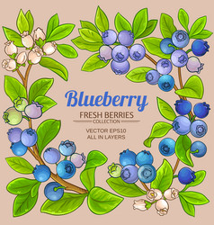 Blueberry branches frame vector