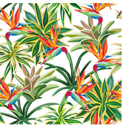 cactus bird paradise flowers seamless pattern vector image