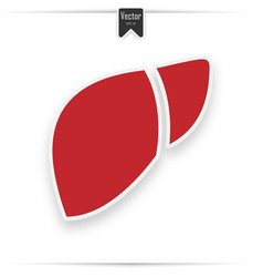 human organ liver red flat icon vector image