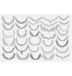 natural leaves ornament doodle set vector image
