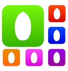 Pecan nut set color collection vector